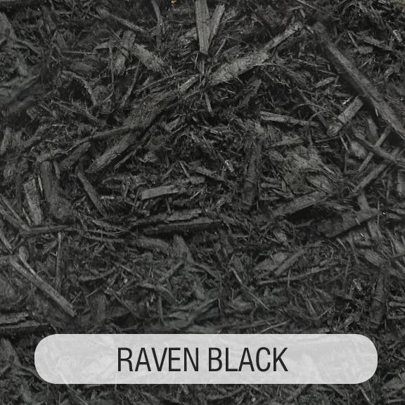 RAVEN BLACK TITLED