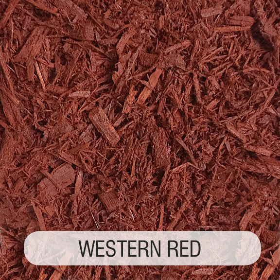 WESTERN RED TITLED